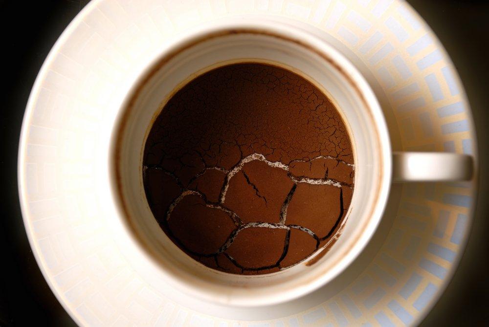 Kávová usadenina proti mravcom
