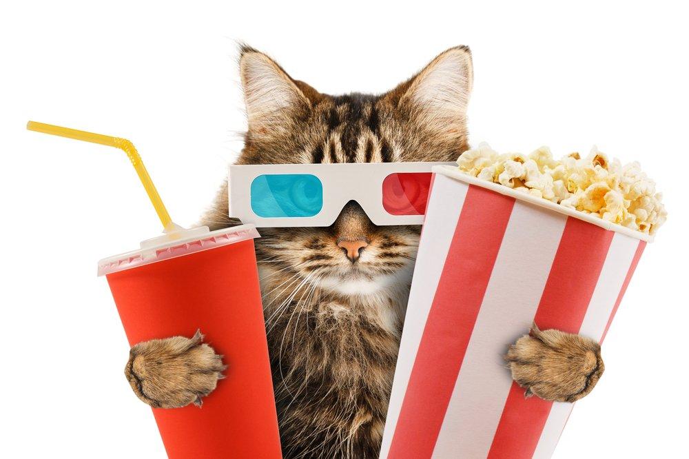 naozajstný filmový fanúšik
