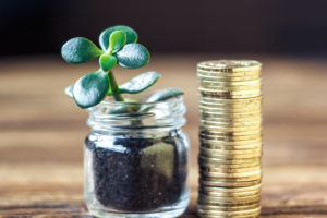 tučnolist a peniaze