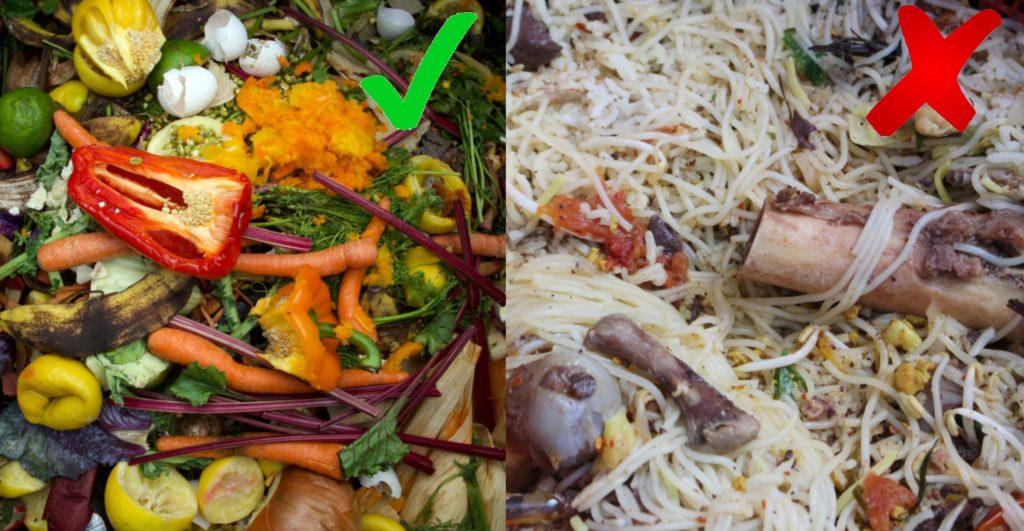 Zelenina a ovocie patria do vermikompostéru ale mäso a kože nie.