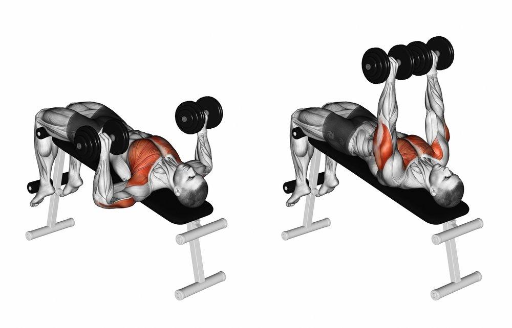 Tieto skupiny svalov zapojí lavička so záporným sklonom