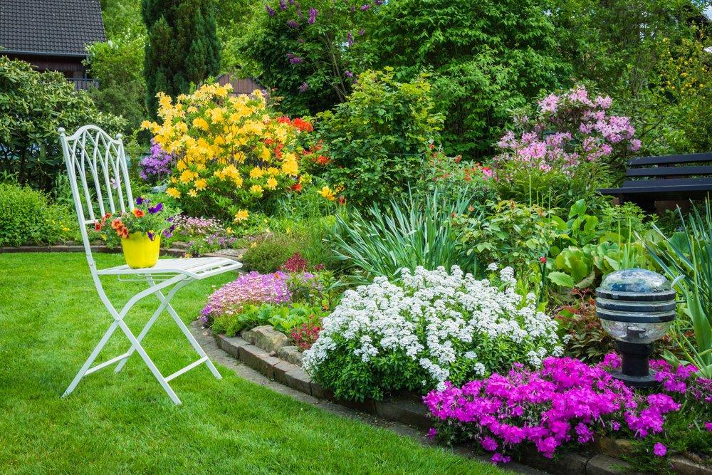 Rozkvitnutá záhrada
