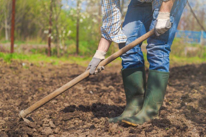 Muž okopáva pôdu