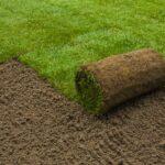 Trávnikový koberec - zelený trávnik na záhrade do niekoľkých dní - ako na to?