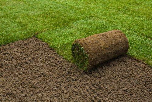 Kobercový trávnik
