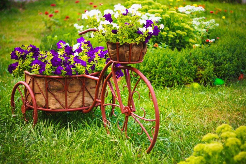 Kvitnúci trávnik