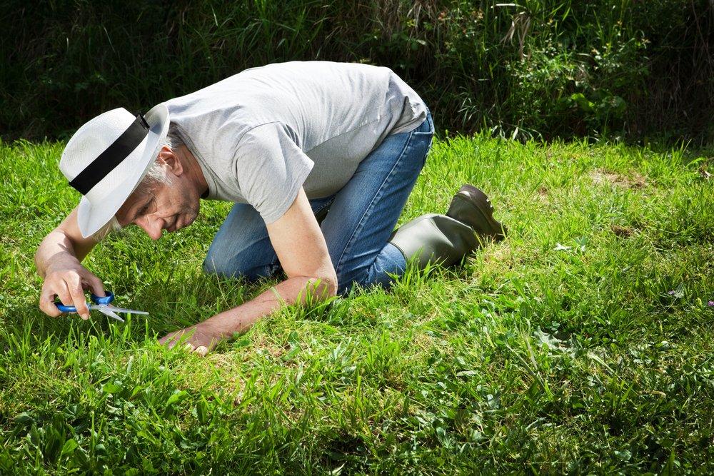 Optimálna výška kosenia - senior záhradník na kolenách