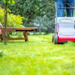 Starostlivosť o trávnik (podľa ročných období)