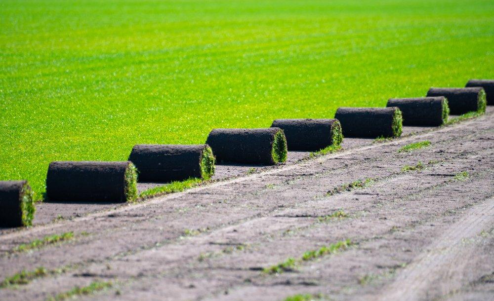 Trávnikový koberec - pestovanie u výrobcu