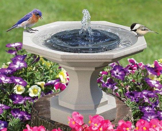 Solárna fontána pre vtákov