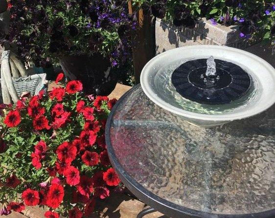 Kvety okolo solárnej fonátny