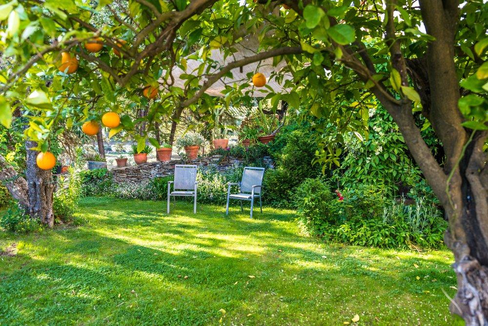 Stoličky v záhrade