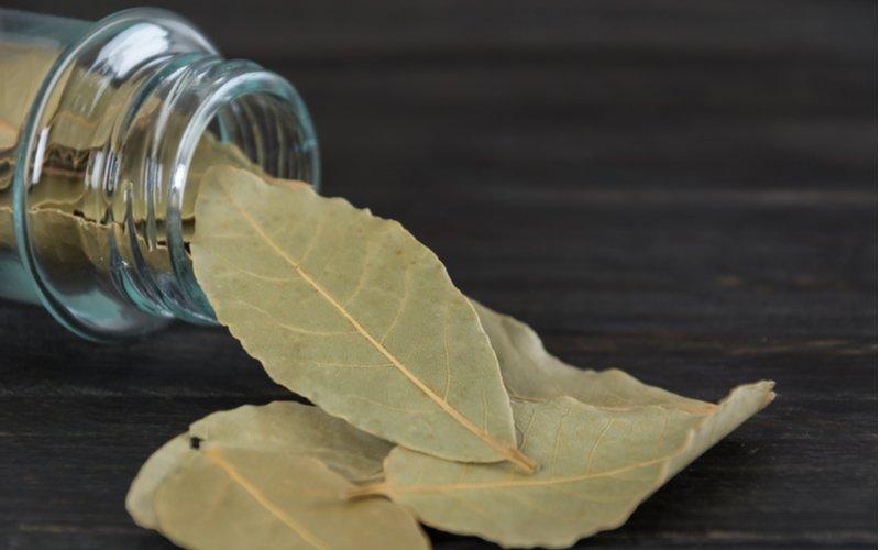 sklenená nádoba so sušeným bobkovým listom