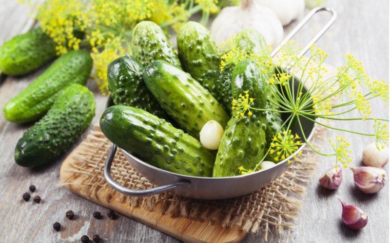 Uhorky na zaváranie,kôpor a cesnak
