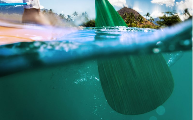 Veslo paddleboardu