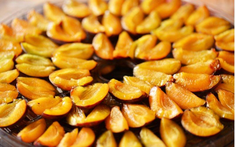 Rozkrojené slivky v sušičke ovocia