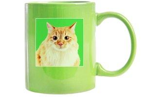 Vtipný zelený hrnček s mačkou