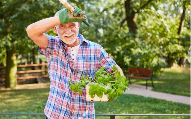 Starý pán so záhradným náčiním a bazalkou