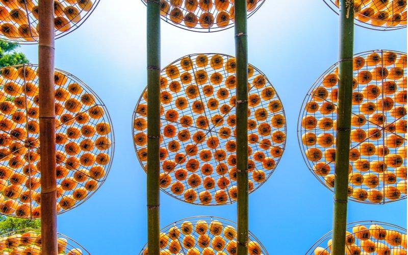 Sušenie ovocia na slnku