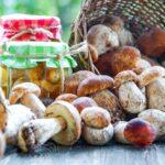 Ako na zaváranie húb + recepty na 4 nálevy
