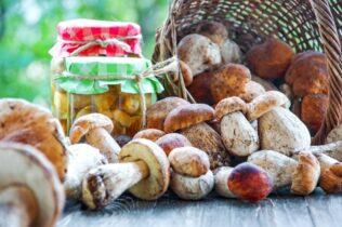 Košík s hubami a huby zavárané v pohári