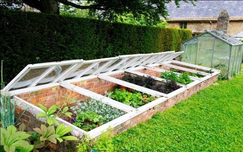 Domáce otvorené parenisko s rastlinami