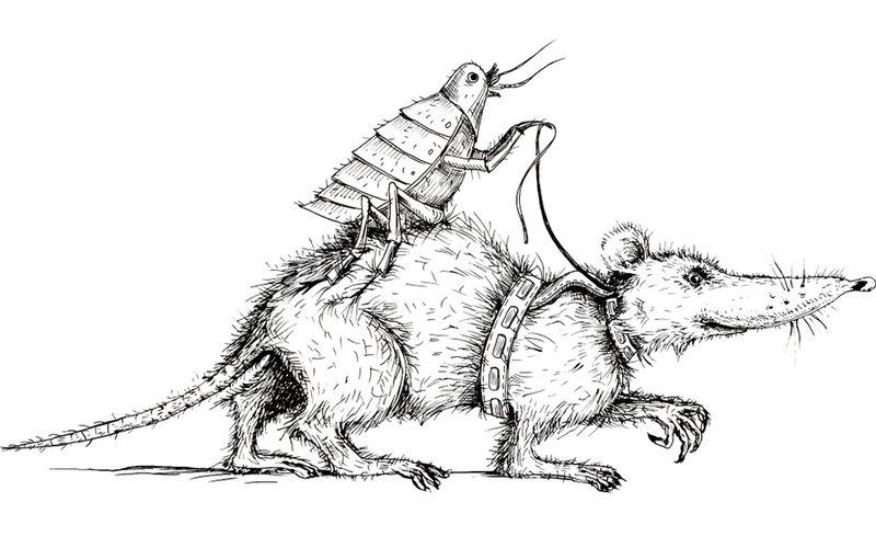 potkan a blcha ilustrácia, zdroj nákazy čierneho moru